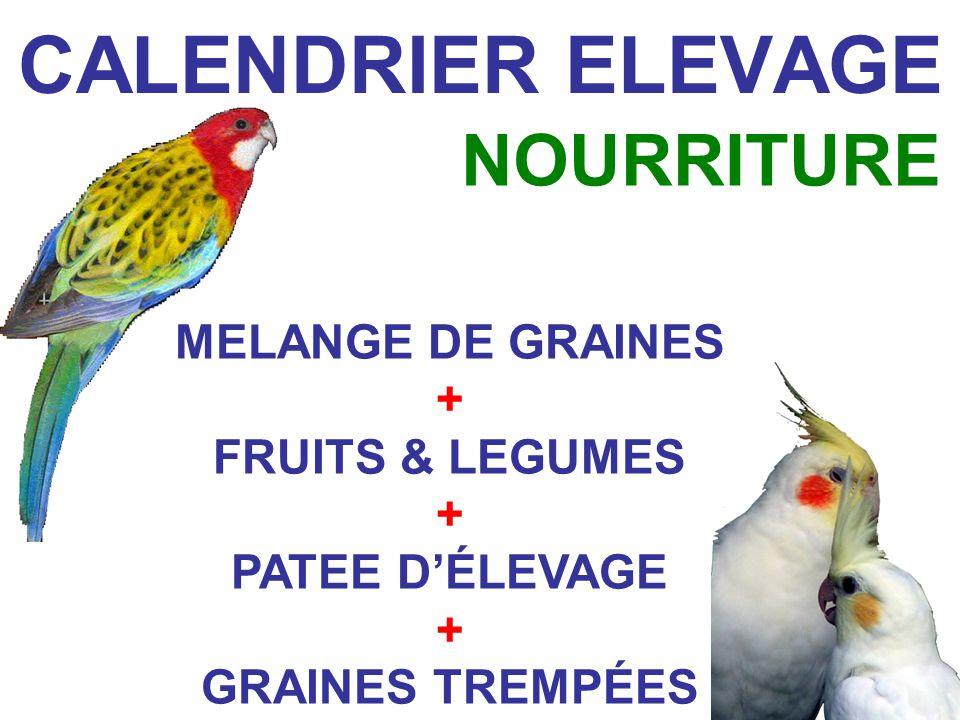 CALENDRIER ELEVAGE NOURRITURE MELANGE DE GRAINES + FRUITS & LEGUMES