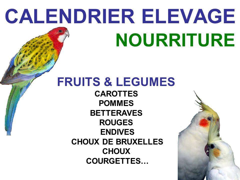 CALENDRIER ELEVAGE NOURRITURE FRUITS & LEGUMES CAROTTES POMMES