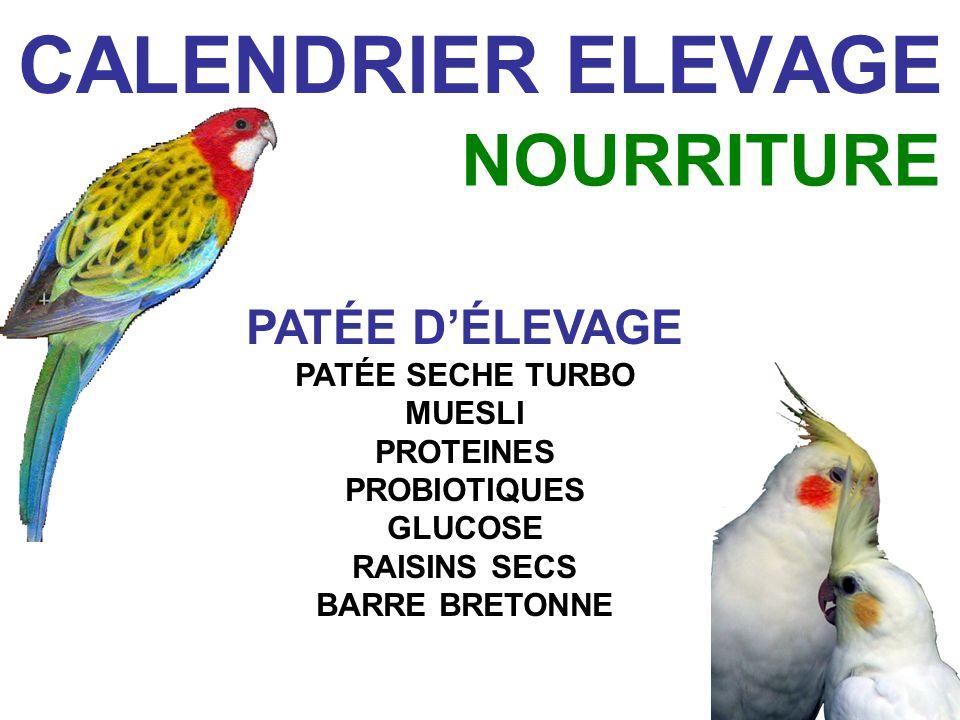 CALENDRIER ELEVAGE NOURRITURE PATÉE D'ÉLEVAGE PATÉE SECHE TURBO MUESLI