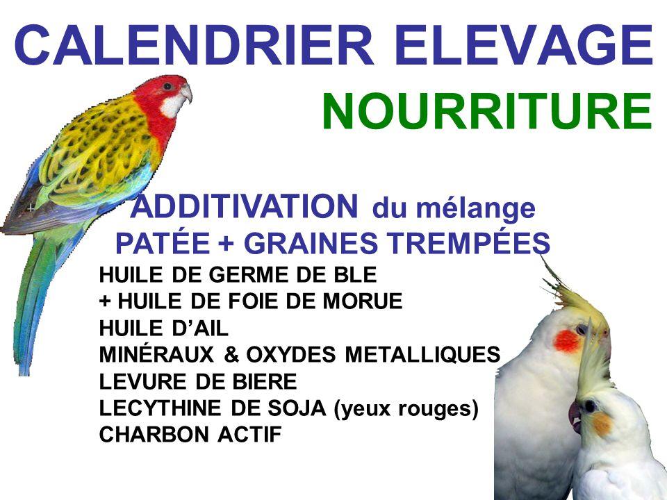 ADDITIVATION du mélange PATÉE + GRAINES TREMPÉES