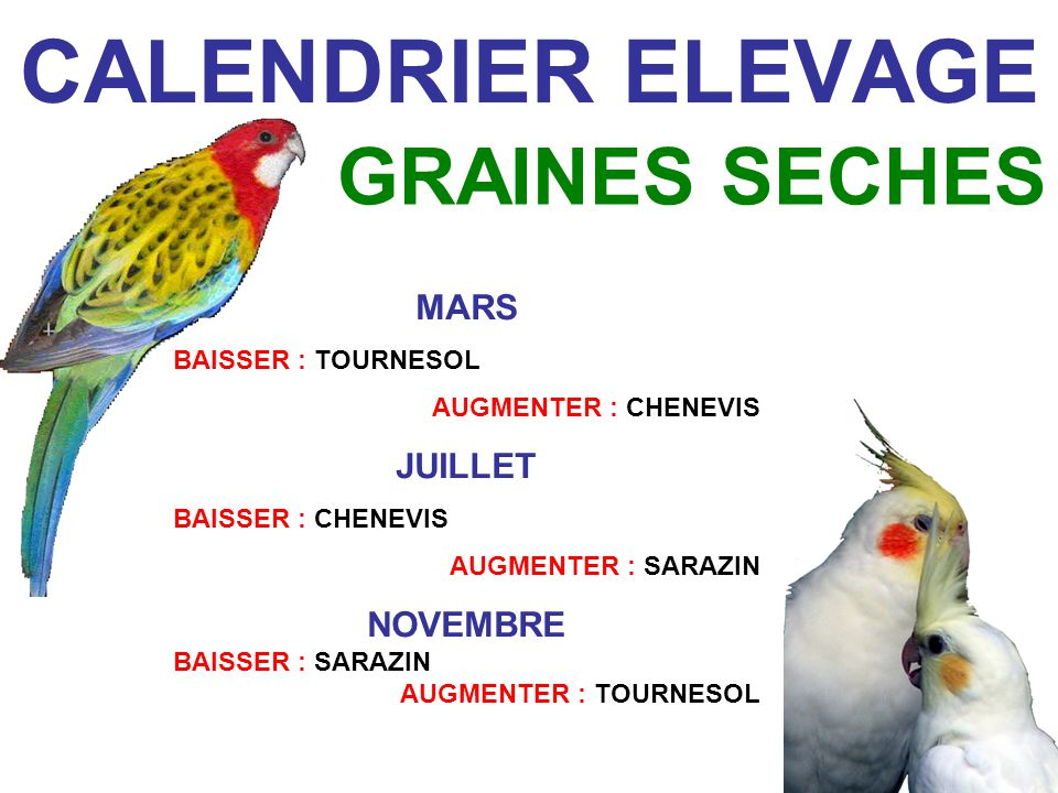 CALENDRIER ELEVAGE GRAINES SECHES MARS JUILLET NOVEMBRE