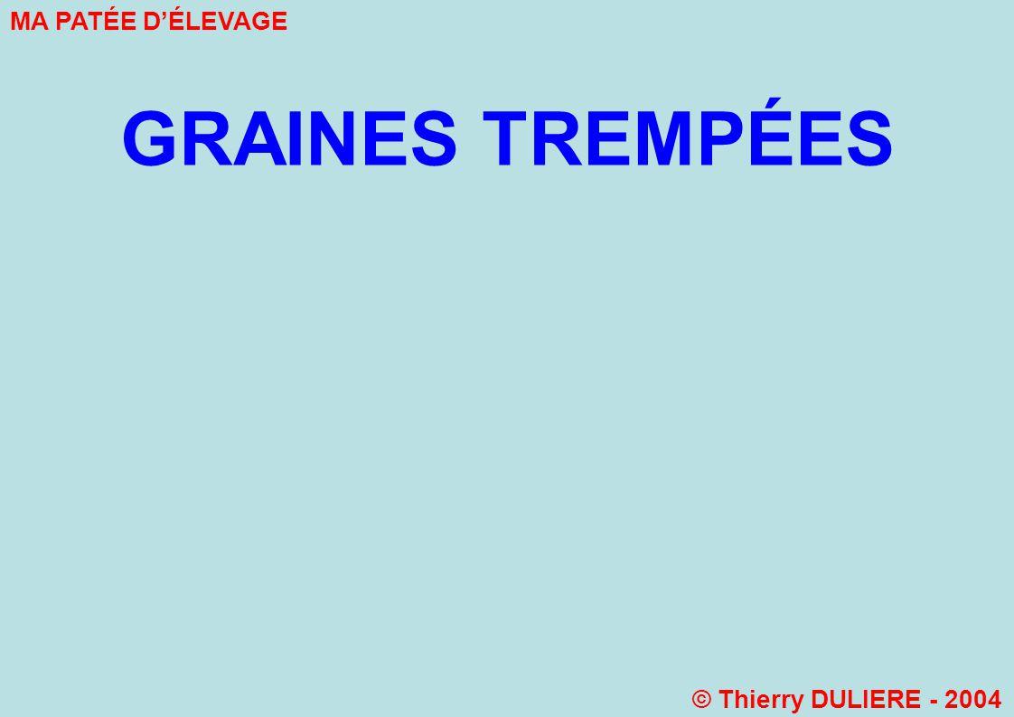 GRAINES TREMPÉES MA PATÉE D'ÉLEVAGE © Thierry DULIERE - 2004