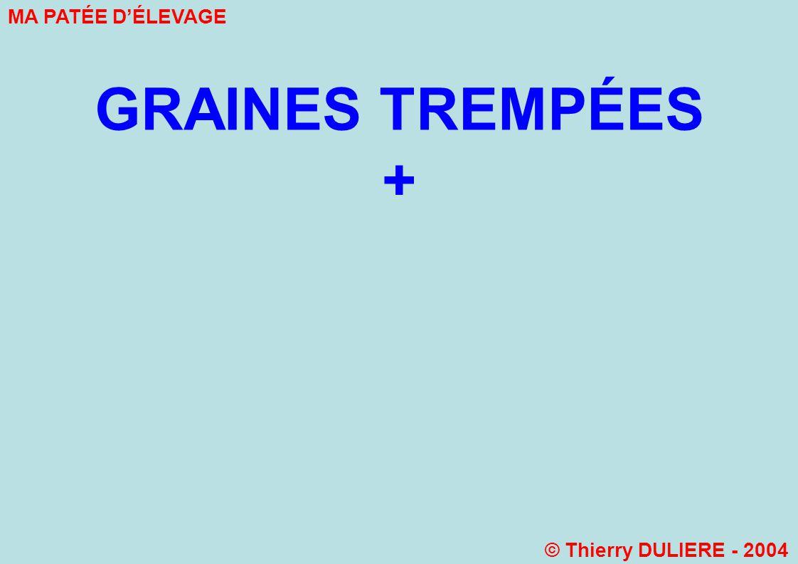 GRAINES TREMPÉES + MA PATÉE D'ÉLEVAGE © Thierry DULIERE - 2004