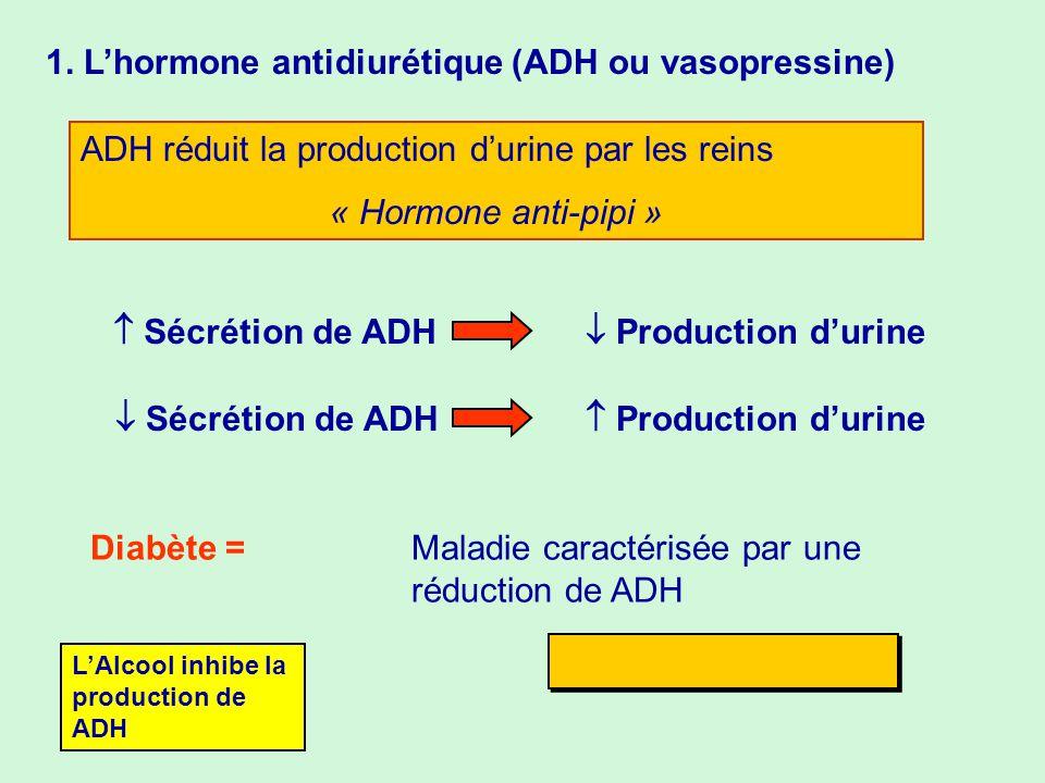 1. L'hormone antidiurétique (ADH ou vasopressine)