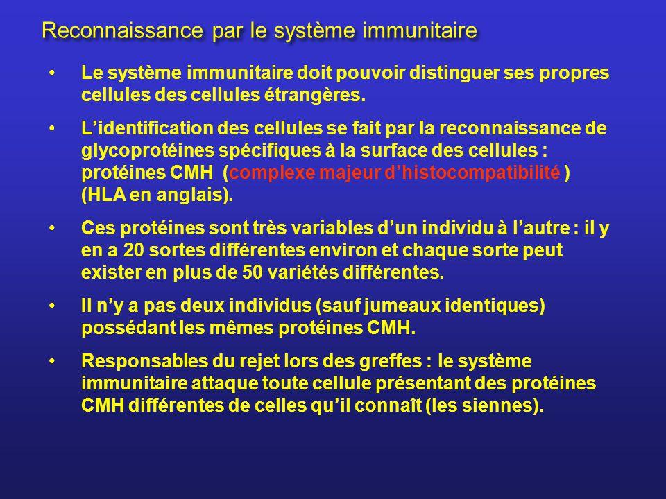 Reconnaissance par le système immunitaire
