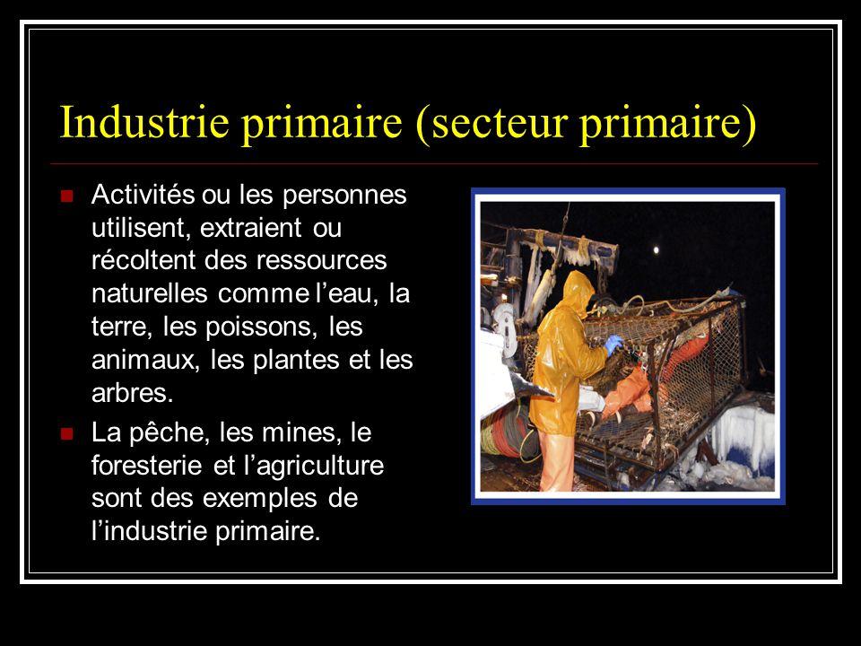 Industrie primaire (secteur primaire)