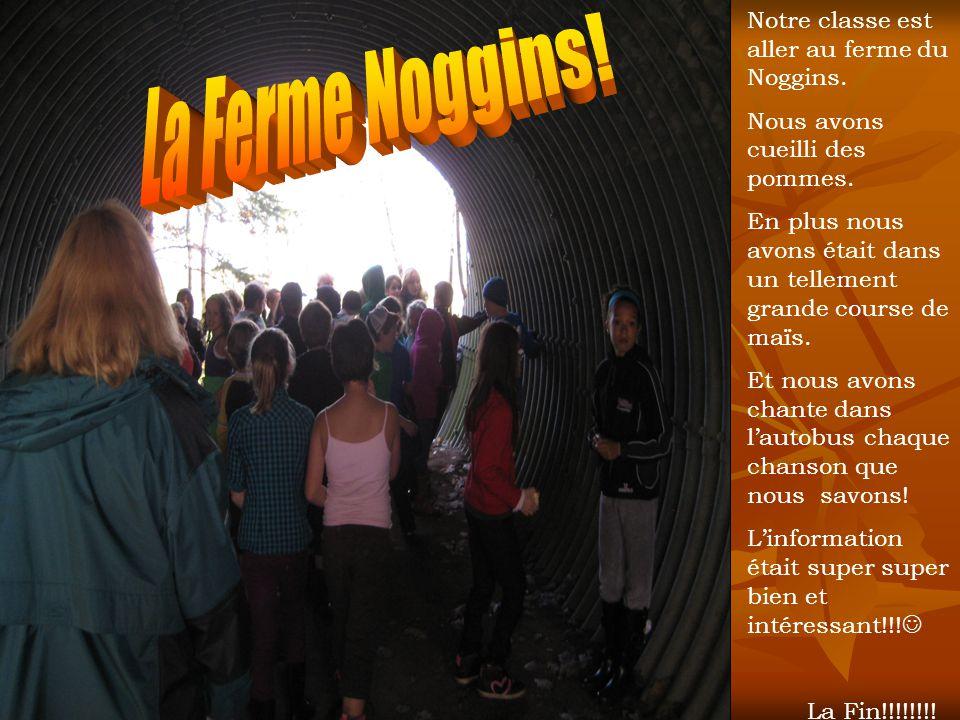 La Ferme Noggins! Notre classe est aller au ferme du Noggins.