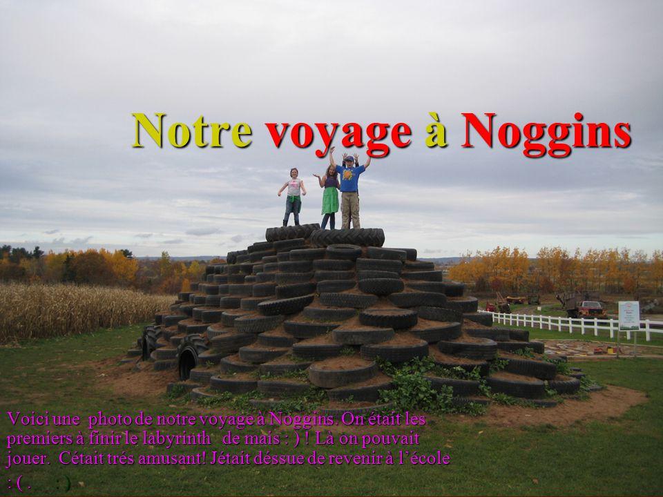Notre voyage à Noggins