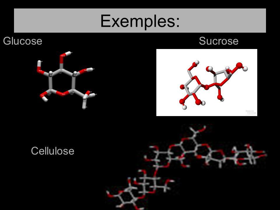 Exemples: Glucose Sucrose Cellulose
