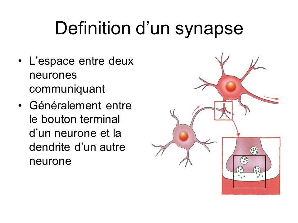 Definition d'un synapse
