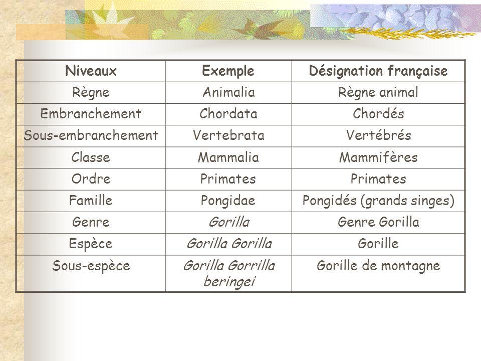 Désignation française