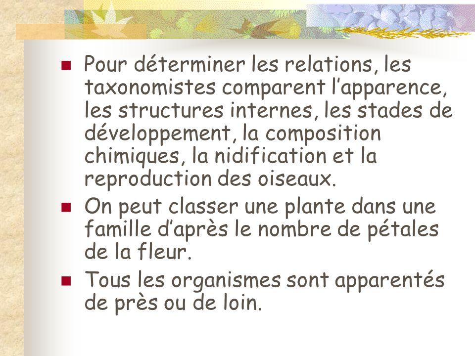 Pour déterminer les relations, les taxonomistes comparent l'apparence, les structures internes, les stades de développement, la composition chimiques, la nidification et la reproduction des oiseaux.