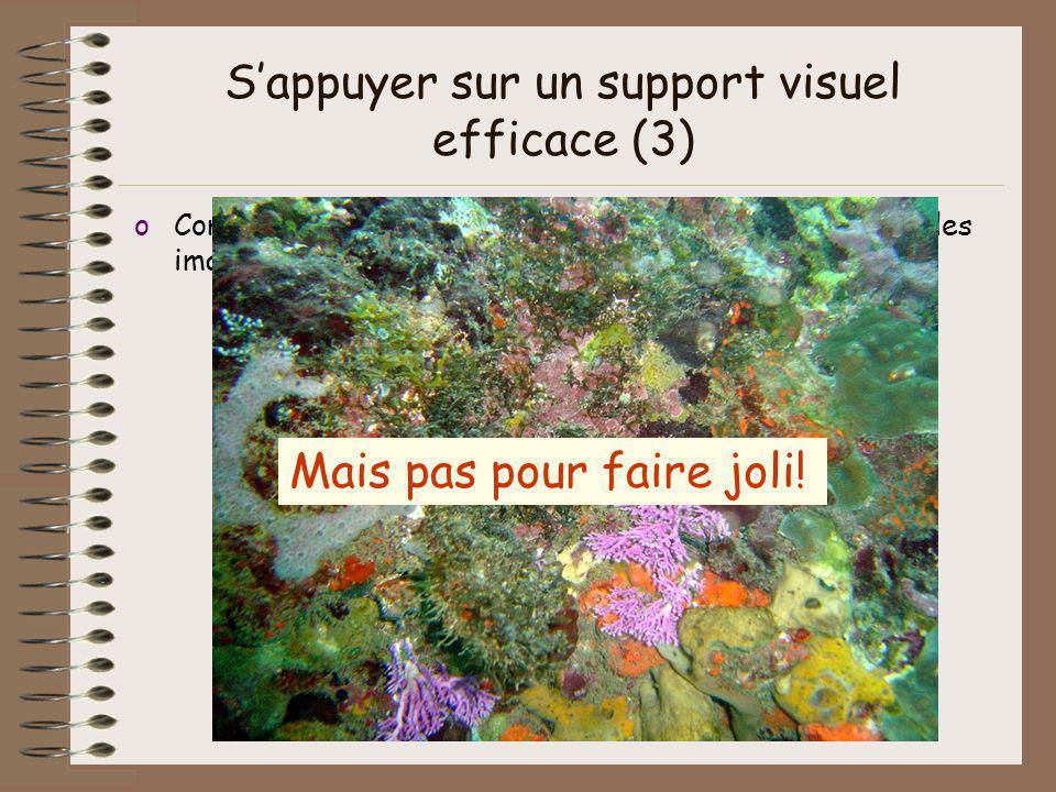 S'appuyer sur un support visuel efficace (3)