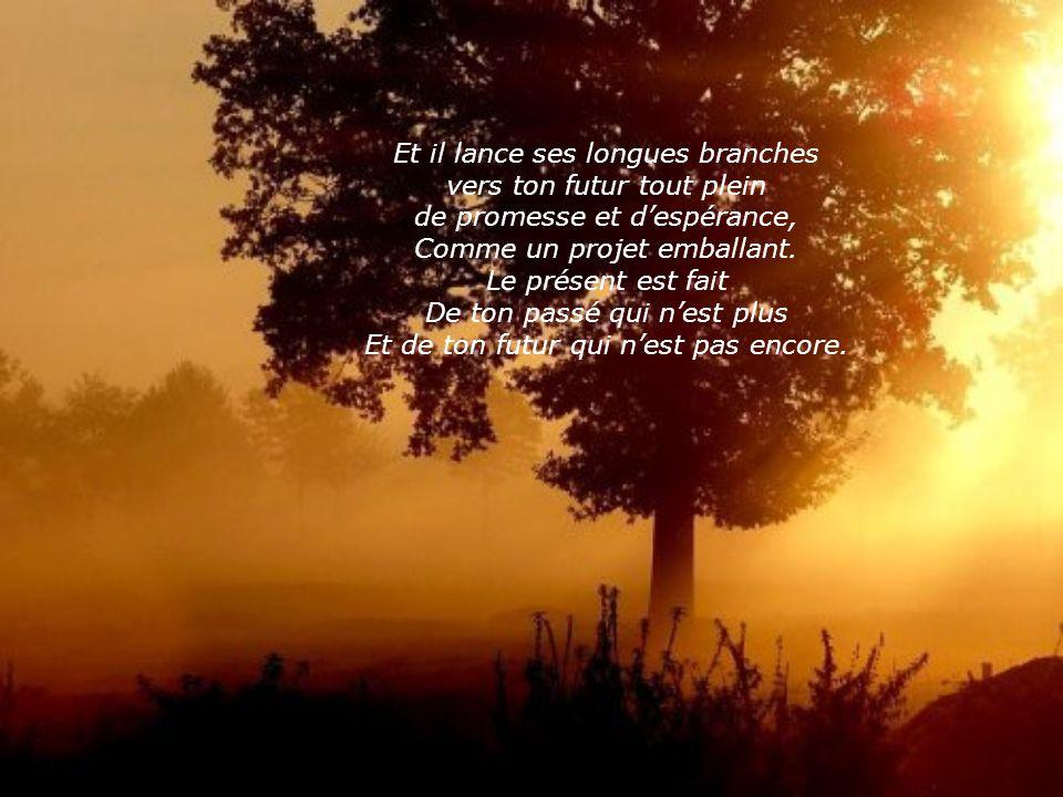 Et il lance ses longues branches vers ton futur tout plein