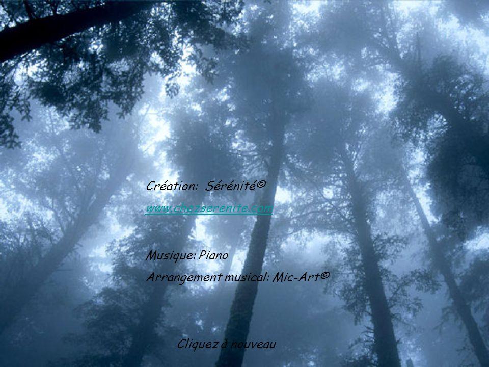 Création: Sérénité© www.chezserenite.com. Musique: Piano.