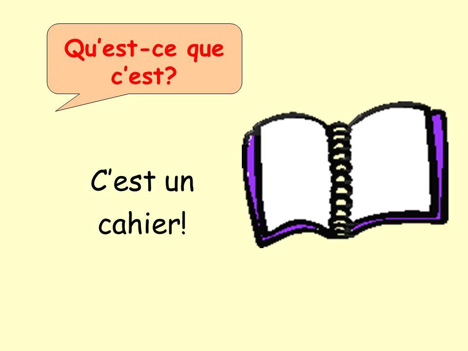 Qu'est-ce que c'est C'est un cahier!