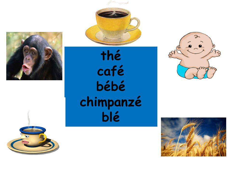 thé café bébé chimpanzé blé