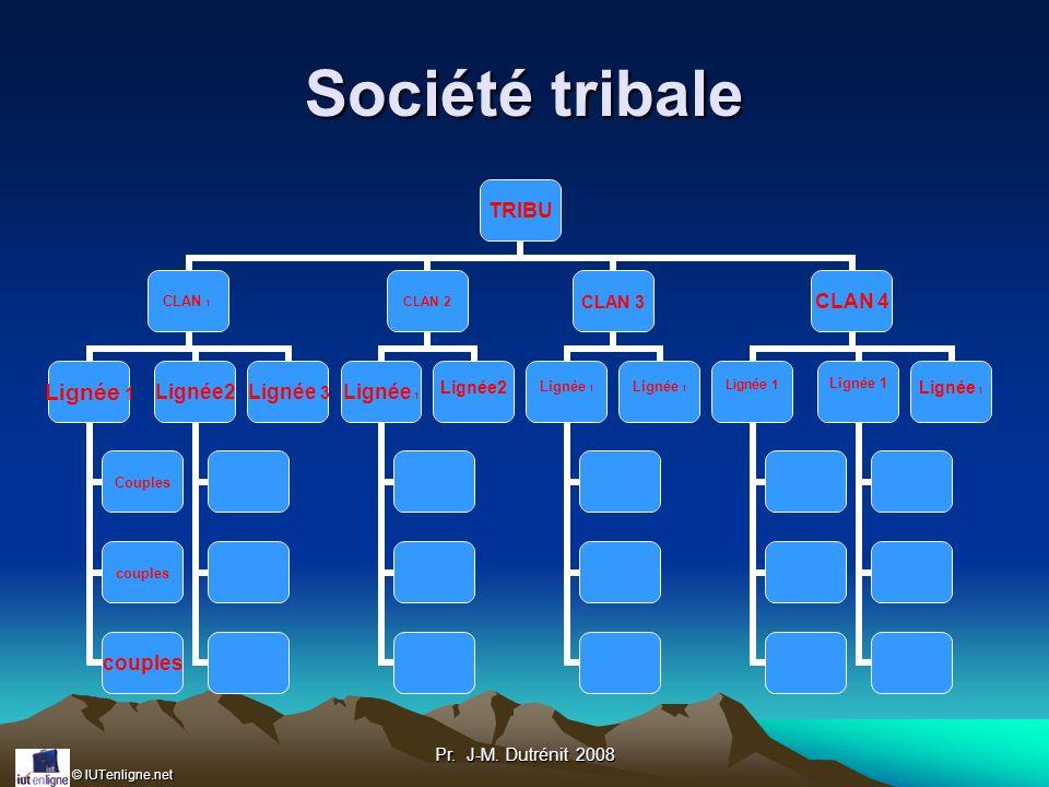 Société tribale Pr. J-M. Dutrénit 2008