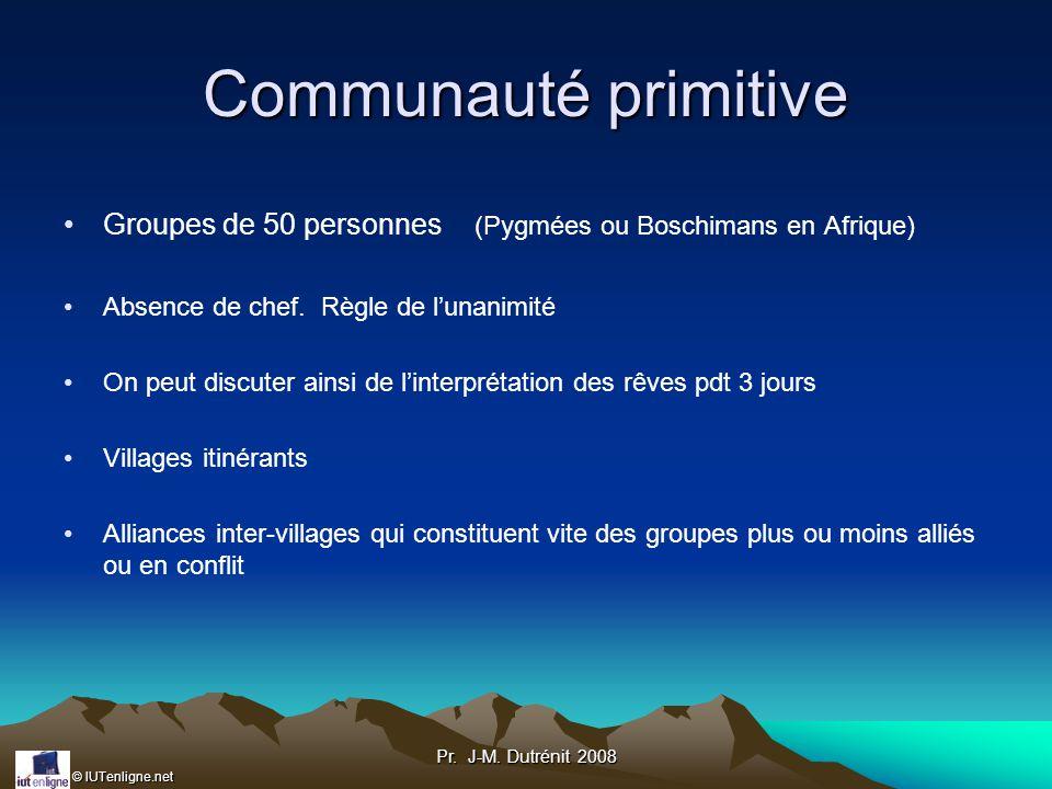 Communauté primitive Groupes de 50 personnes (Pygmées ou Boschimans en Afrique) Absence de chef. Règle de l'unanimité.