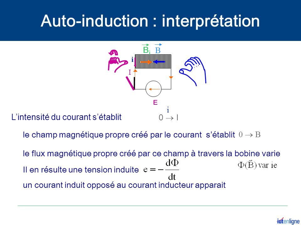 Auto-induction : interprétation