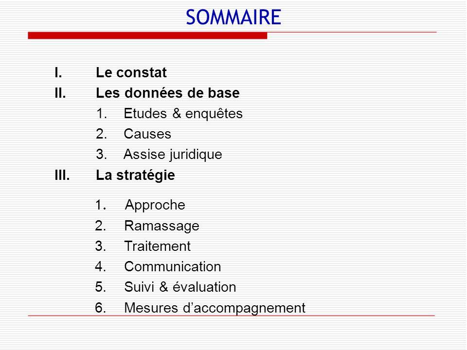 SOMMAIRE Le constat Les données de base 1. Etudes & enquêtes 2. Causes