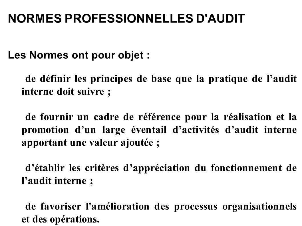 NORMES PROFESSIONNELLES D AUDIT