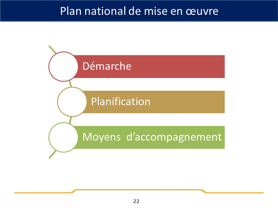 Plan national de mise en œuvre