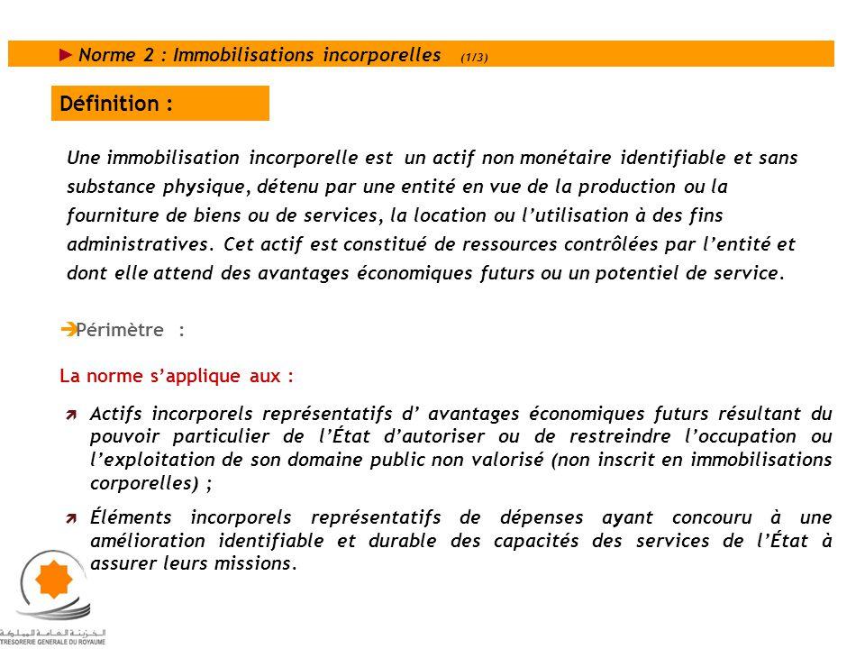 Définition : Norme 2 : Immobilisations incorporelles (1/3)