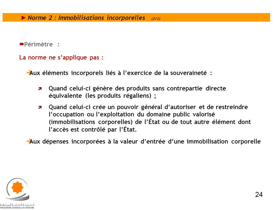 24 Norme 2 : Immobilisations incorporelles (2/3) Périmètre :