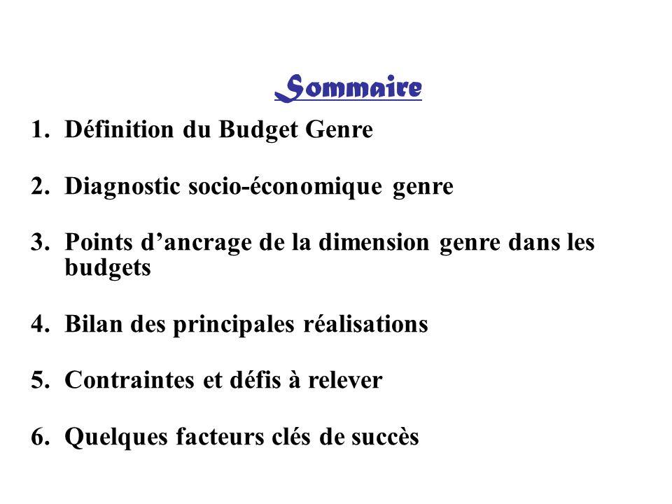 Sommaire Définition du Budget Genre Diagnostic socio-économique genre