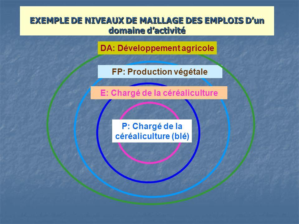 EXEMPLE DE NIVEAUX DE MAILLAGE DES EMPLOIS D'un domaine d'activité