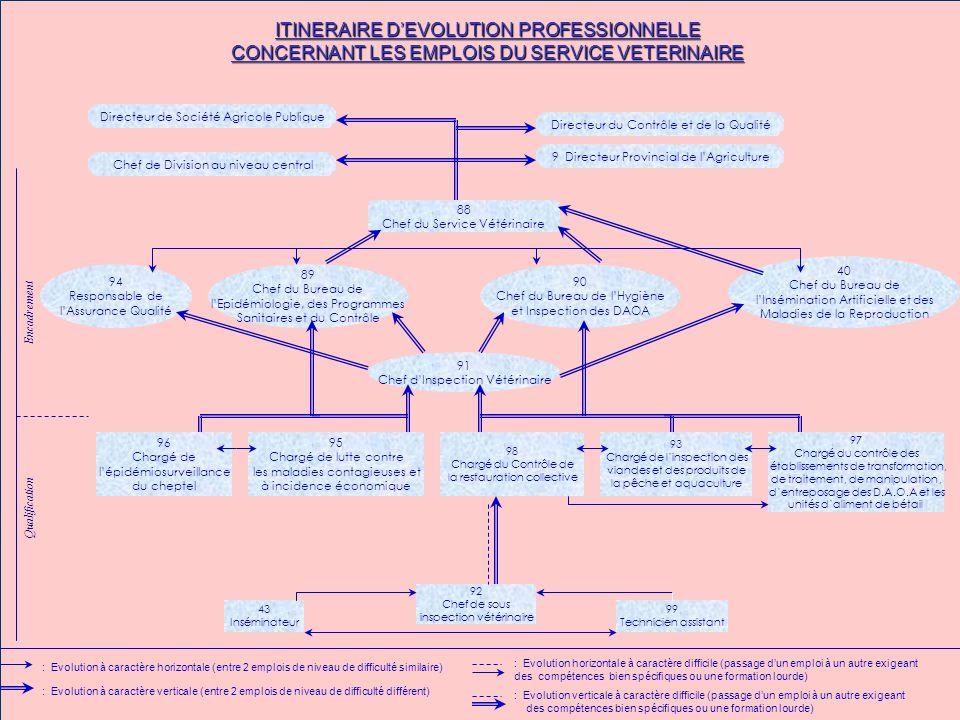 ITINERAIRE D'EVOLUTION PROFESSIONNELLE CONCERNANT LES EMPLOIS DU SERVICE VETERINAIRE