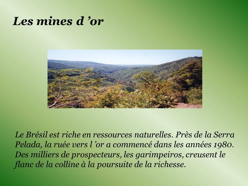 Les mines d 'or