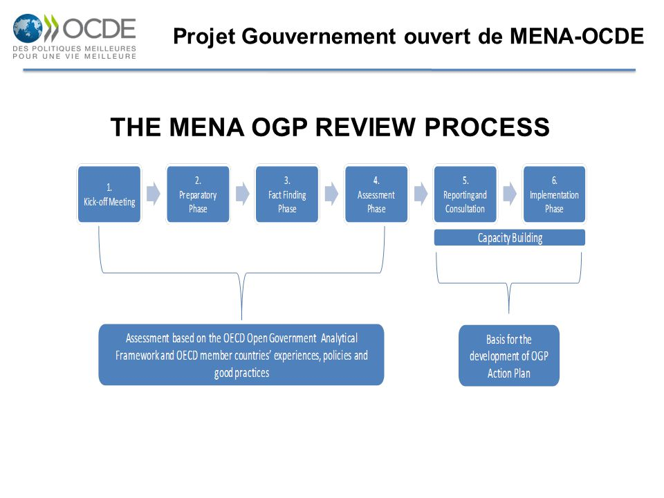 THE MENA OGP REVIEW PROCESS