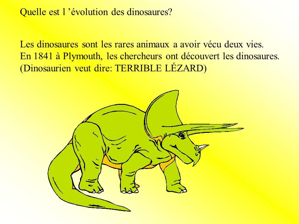 Quelle est l 'évolution des dinosaures