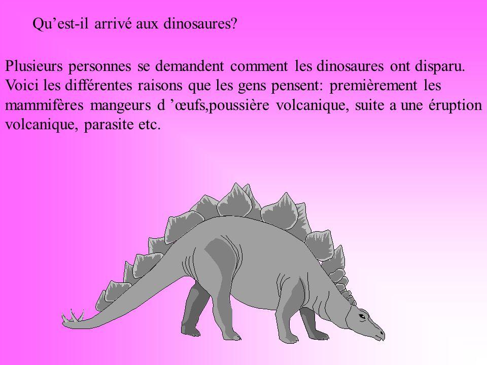 Qu'est-il arrivé aux dinosaures