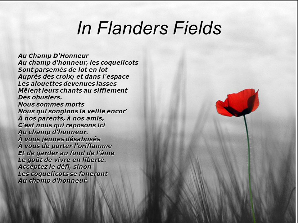 In Flanders Fields Au Champ D Honneur