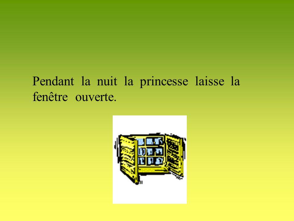 Pendant la nuit la princesse laisse la fenêtre ouverte.