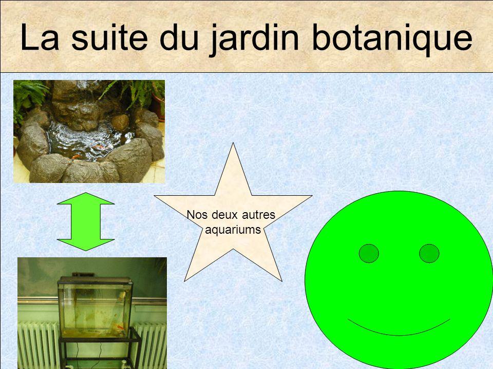 La suite du jardin botanique