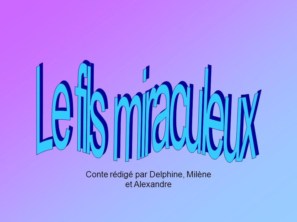 Conte rédigé par Delphine, Milène et Alexandre