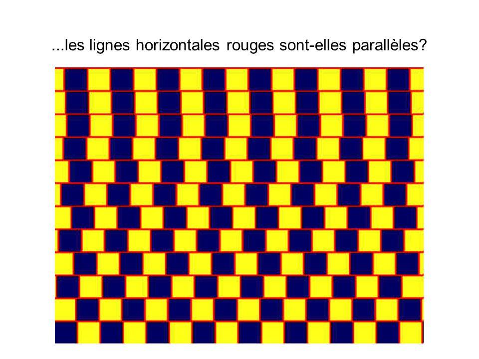 ...les lignes horizontales rouges sont-elles parallèles