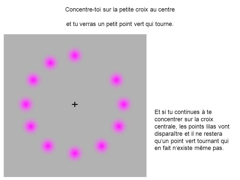 Concentre-toi sur la petite croix au centre et tu verras un petit point vert qui tourne.