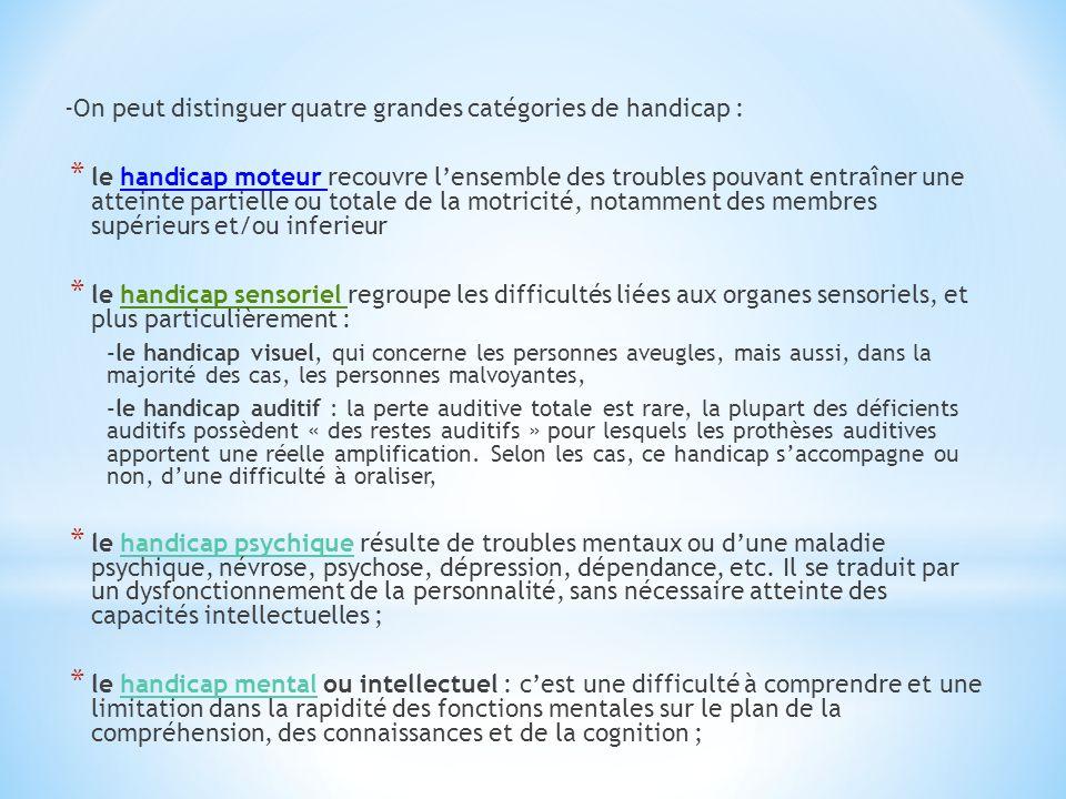 -On peut distinguer quatre grandes catégories de handicap :
