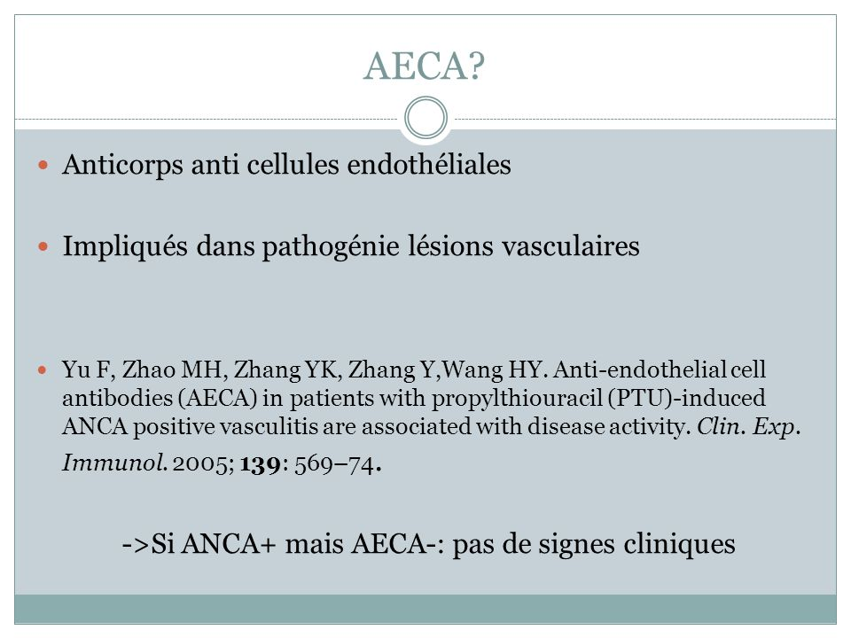 AECA Anticorps anti cellules endothéliales