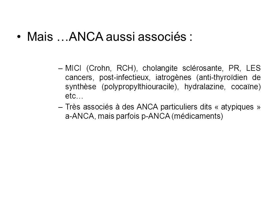 Mais …ANCA aussi associés :