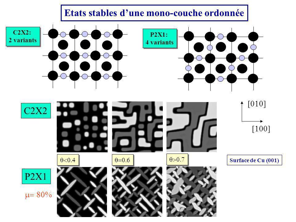 Etats stables d'une mono-couche ordonnée