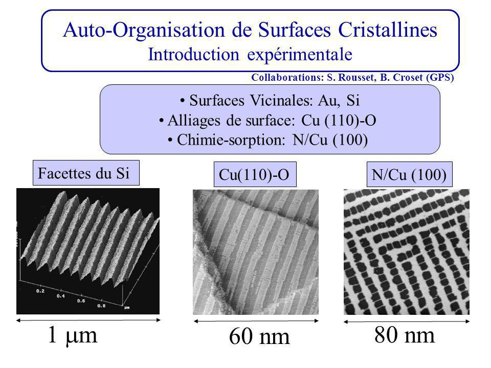 Auto-Organisation de Surfaces Cristallines Introduction expérimentale