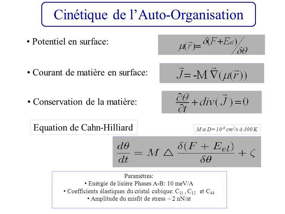 Cinétique de l'Auto-Organisation