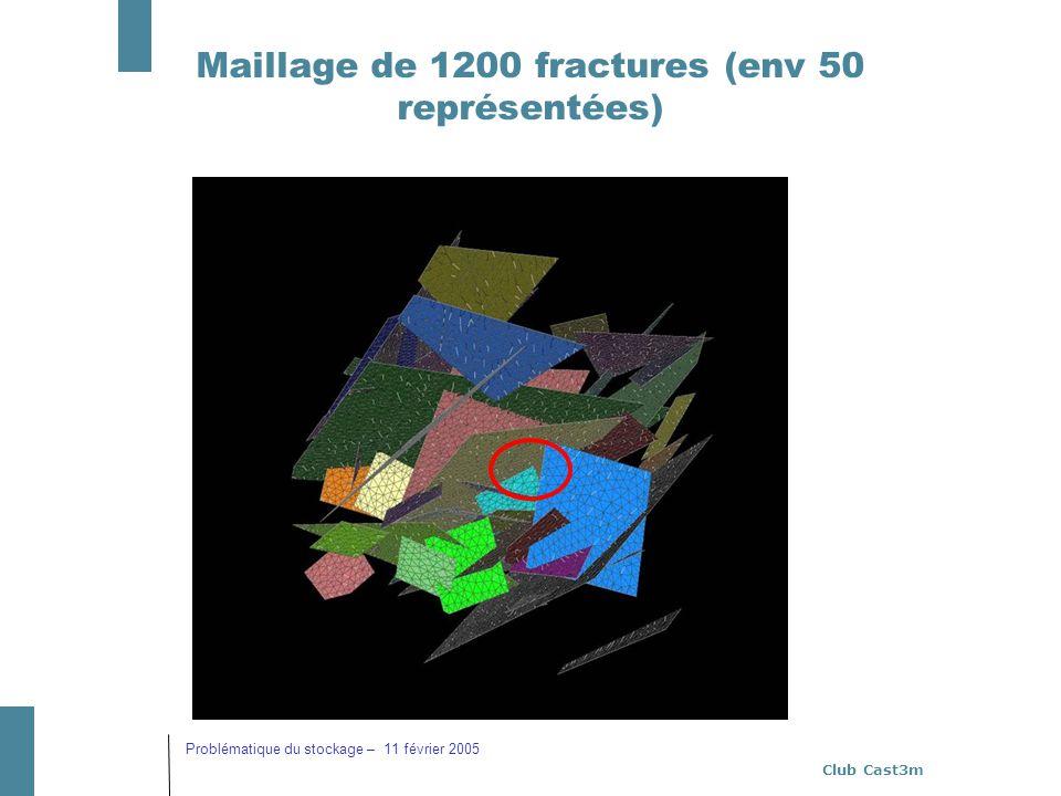 Maillage de 1200 fractures (env 50 représentées)