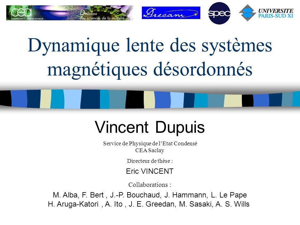 Dynamique lente des systèmes magnétiques désordonnés